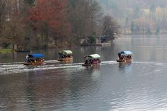 Озеро кровоточило шлюпки стоковое фото rf