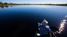 Озеро курятник канюка - болото Okefenokee Стоковое Фото