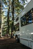 Озеро ландшафта Канады леса национального парка Algonquin кемпинга 2 рек красивого естественного припарковало автомобиль туриста  Стоковые Изображения