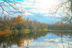 Озеро лес в лесе осени Стоковая Фотография RF