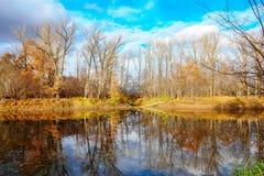 Озеро лес в лесе осени Стоковое фото RF