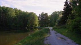Озеро лес и дорога к ей видеоматериал