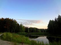 Озеро лес среди деревьев на заходе солнца Стоковые Изображения