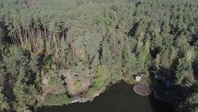Озеро лес с утесами и деревянной пристанью сток-видео