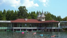 Озеро летом - средняя съемка Heviz акции видеоматериалы