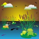 озеро лягушек Стоковая Фотография
