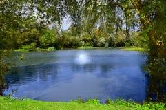 озеро малое Стоковое Изображение RF