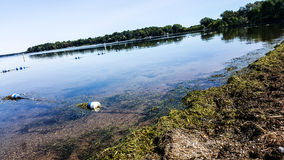 озеро мирное Стоковое Фото