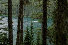 Озеро молни окружающей среды зеленого цвета Канады глуши стоковая фотография rf