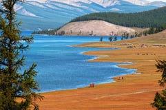 озеро Монголия hovsgol Стоковое Изображение RF