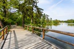 озеро моста над деревянным Стоковая Фотография
