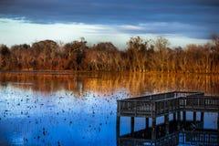 озеро молчком стоковое изображение rf