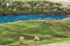 Озеро начало karst Стоковые Фото