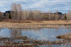 Озеро на весне Стоковое фото RF