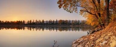 Озеро на осени с деревом, Jursky Sur Стоковое Изображение