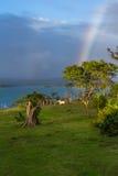 озеро над радугой Стоковые Изображения RF