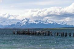 Озеро на Puerto Natales в чилеански Стоковое Изображение