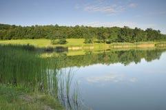 озеро немногая стоковое фото