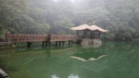 Озеро непотревоженного стоковые фотографии rf