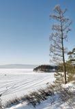 озеро около вала сосенки Стоковое Изображение RF