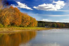 озеро оленей осени Стоковые Изображения RF