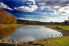 озеро оленей осени Стоковое фото RF