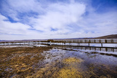 озеро осени красивейшее Стоковая Фотография