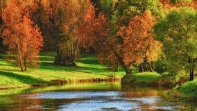 озеро осени Стоковая Фотография RF