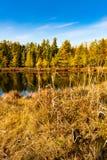 Озеро осенью Стоковое Изображение