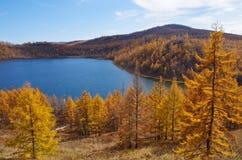 Озеро осен Стоковые Фото