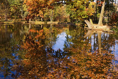 Озеро осен Стоковые Изображения RF