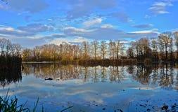 Озеро осен стоковое фото rf