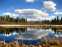 Озеро остров лося Стоковое Изображение