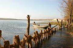 Озеро лотосов Стоковое Изображение RF