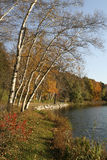 озеро падения спрятанное садами Стоковое фото RF