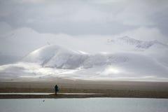 Озеро падуба Стоковое Изображение