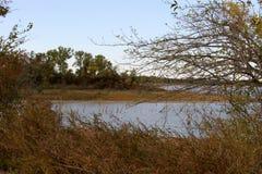 Озеро падать Стоковая Фотография RF