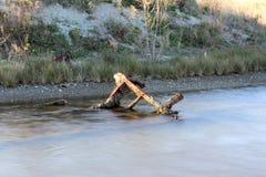 Озеро, поверхность природы и воды, одичалая сцена и горы Стоковые Изображения RF