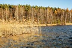 Озеро покрашенное осенью Стоковые Фото