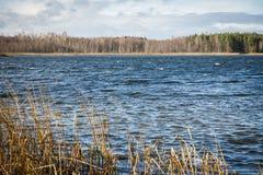 Озеро покрашенное осенью Стоковые Изображения RF