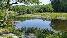 Озеро положени Стоковая Фотография