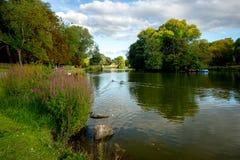 Озеро подпирает в парке, Бирмингеме, Англии Стоковая Фотография RF