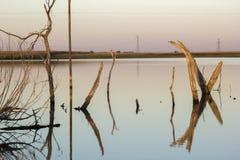 Озеро прери стоковые фотографии rf