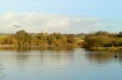 Озеро преступление стоковое изображение rf