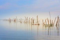 Озеро пусто стоковые изображения rf