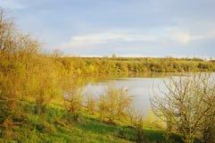 озеро пущи ближайше Стоковые Фотографии RF