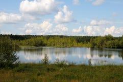 озеро пущи карельское одичалое Стоковые Изображения RF