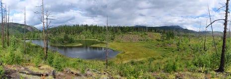 озеро пущи стоковые изображения rf