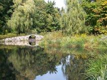 озеро пущи Стоковое Изображение