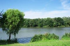 озеро рыболова Стоковые Изображения